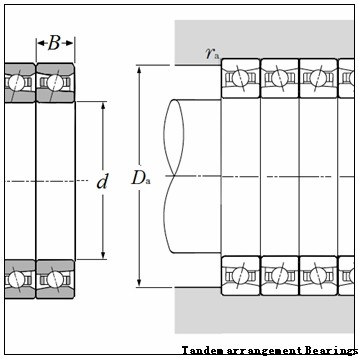 SKF (DBT arrangement) Tandem arrangement Bearings
