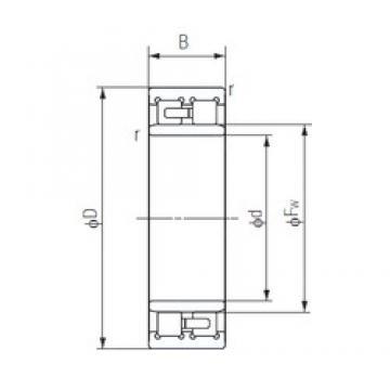 220 mm x 300 mm x 80 mm  NACHI NNU4944 Special Polyamide cage design Precision Bearings