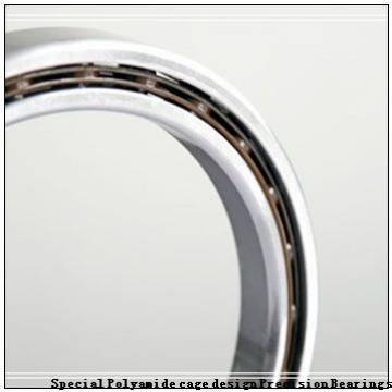 BARDEN 7602100TVP Special Polyamide cage design Precision Bearings