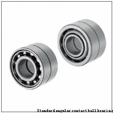 "BARDEN ""CZSB104E"" Standard angular contact ball bearing"