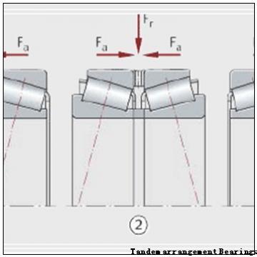 BARDEN (DTBT arrangement) Tandem arrangement Bearings